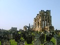 Tynemouth Priory - Late medieval church and graveyard
